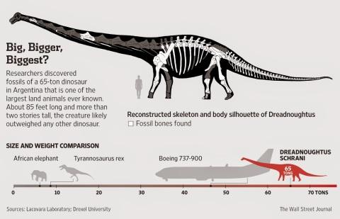 Dreadnoughtus-iv